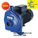 Máy bơm nước Panasonic 1.5HP GP-15HCN1L