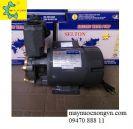 Máy bơm nước bánh răng NAGAKI LD-150
