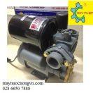 Máy Bơm nước bánh răng tự động tăng áp SEATEC-162EA