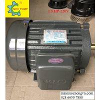 Motor khía 3 phase 1-5HP VTC