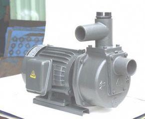 Máy bơm tự hút Đầu Gang 2HP HSP250-11.5 205