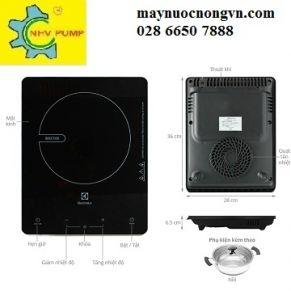 Bếp từ Electrolux ETD29KC