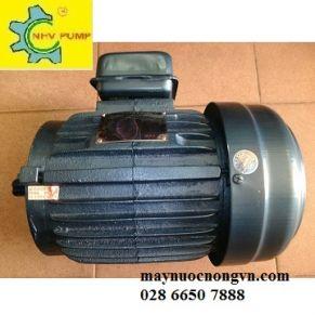 Motor điện  VCD (Taiwan)