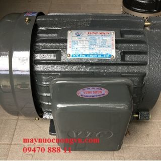 Motor khía 3 phase 2HP 6P VTC